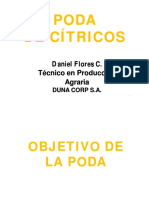 Poda de Cítricos.pdf