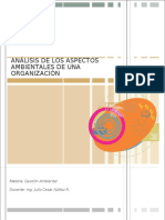 Analisis Ambientales d Una Organizacion