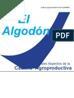 agroeconomiaalgodon3