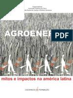 Agroenergia - Mitos e impactos na América Latina - CPT, 2007.pdf
