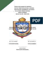 AARON PENSO INFORME DE PRÃ CTICA PROFESIONAL.pdf