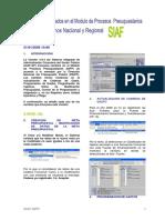 Manual_SIAF.pdf