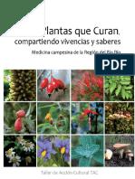 plantas-que-curan-140312200455-phpapp02.pdf