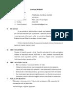 5 Formato Plan de Trabajo Yachay 2016