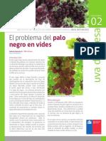 FICHA 02 INTIHUASI Palo Negro en Vides