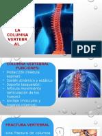 columna clinico.pptx
