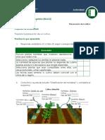 1. Planeacion Del Cultivo