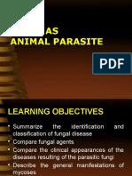Fungi as Animal Parasites