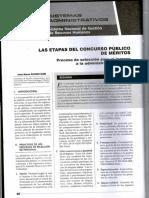 LAS ETAPAS DEL CONCURSO PÚBLICO DE MÉRITOS - AUTOR JOSÉ MARÍA PACORI CARI