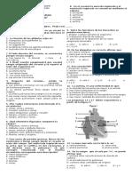 Prueba s. Circulatorio 2012