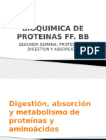 Bioquimica 1 2da Semana