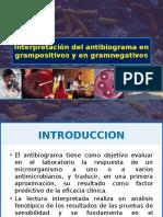 Interpretacion Del Antibiograma en Gram Negativos y Positivos
