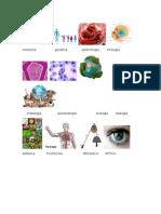 Anotomia Genetica Embriologia Citologia