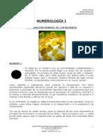 2 Manual de Numerologia-teoria