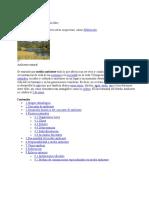 Medio ambiente1.doc