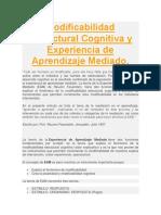 NT3 - Modificabilidad Estructural Cognitiva y Experiencia de Aprendizaje Mediado