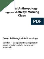 cultural anthropology jigsaw activity  morning class