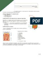 Ft6 001 (Sistema Digestivo e Respiratório)