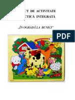 Model de Proiect Bine Structuratvproiect in Ograda La Bunici