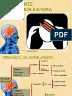 II.6-Patología SNC(1)