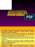 musculo( general) bueno.ppt