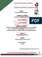 EntornoVesp.Janet.pdf