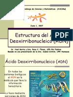 Estructura ADN Junio 07.ppt