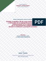 María Mercedes Febles Borges.pdf