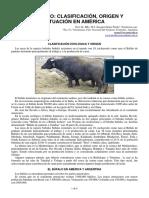 54-bufalo