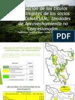 Diagnostico Concesiones Forestales San Martín