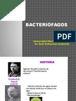 T4V- BACTERIÓFAGOS (3)