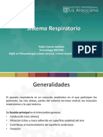 4. SISTEMA RESPIRATORIO (1).pdf