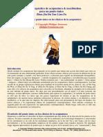 Acupuntura - Punto Unico de Los Clasicos - Philippe Sionneau