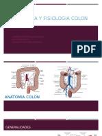 Anatomia y Fisiologia Colon