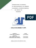 Ciclo de Krebs y ATP