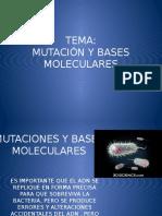 Mutaciones y Bases Moleculares Teoria