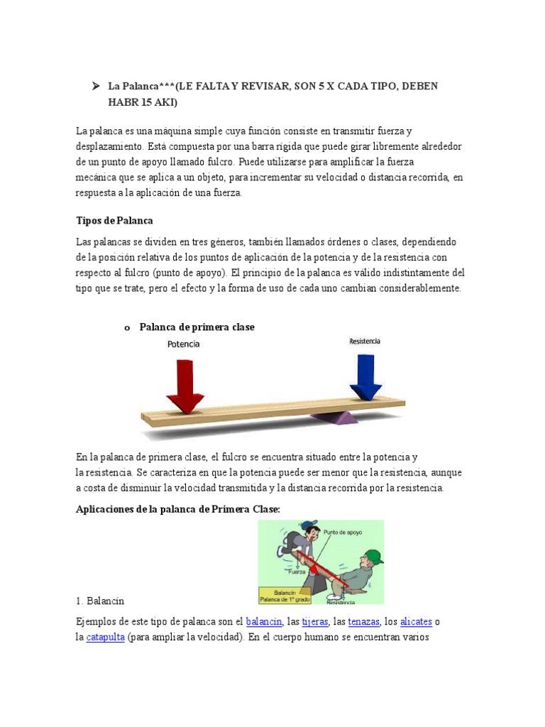 Vistoso Aplicación De La Anatomía De Velocidad Ideas - Anatomía de ...