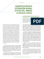 08 Arroz Rural