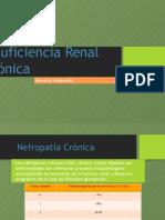 Insuficiencia Renal Cronica1