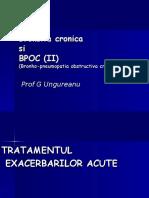 Bronsita Cr Curs 2011-BF