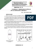 Pract 07 MediciÓn de Celulas CA 14 i3-1