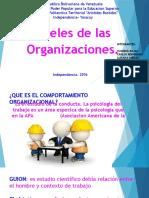 Niveles de La Organizacion . Diapositivas