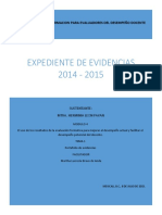 Expediente de Evidencias primaria