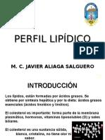 6.- PERFIL LIPIDICO