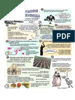 La Revolución Industrial y Francesa, 3ero Historia.