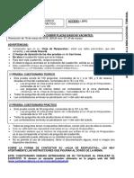 Examen_P_L.pdf