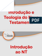 01- INTRODUCÃO NT