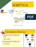 Genetica y Embriologia - Lloja