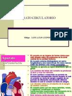 Aparato Circulatorio - Lloja
