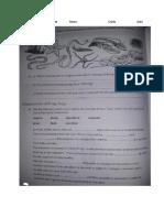 Grade 7 Integrated Science Worksheet